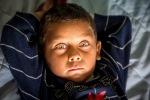 Élysée, le petit frère de Ramona, la star de l'affiche de l'expo.